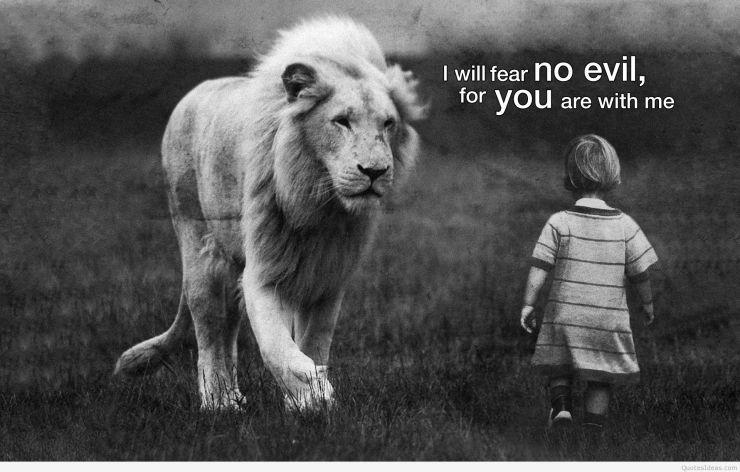 conquer fear.jpg